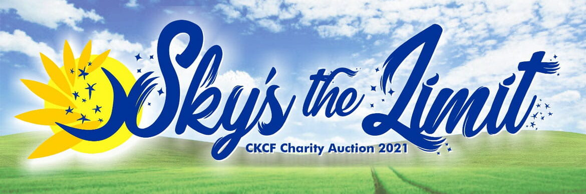 Sky's the Limit Charity Auction